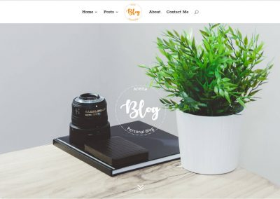 preview-blog-theme1